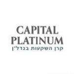 הגדרה ופיתוח כלל פעילות הפרפורמנס והלידים של חברת קפיטל פלטיניום