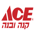 הכשרה אימון וליווי שנתי בשרות מוכר ליועצי הרשת ACE